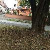 Image 1 of Unidad Residencial Alhambra V Etapa, Cali